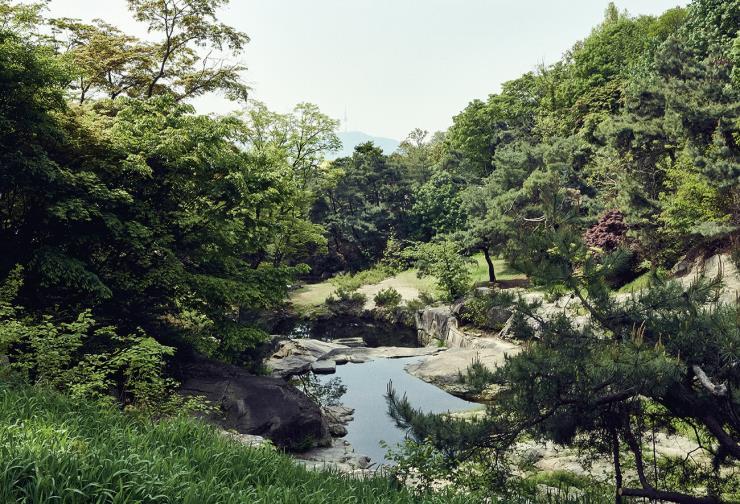 뒤뜰에서 바라본 풍경. 정면으로 계곡과 암석, 용두가산의 녹음 그리고 남산이 보인다.