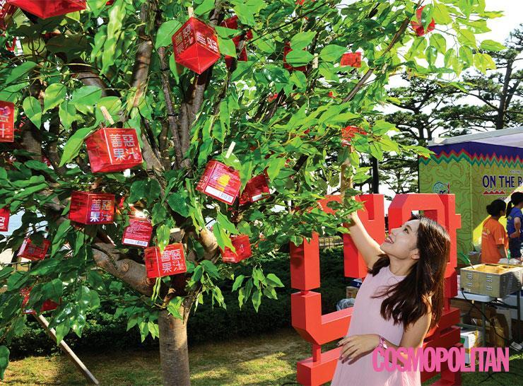 여자를 위한 촉촉 콘돔, 선악과즙! 사과처럼 나무에서 직접 콘돔을 따는 이색 이벤트로 시선을 강탈했다.