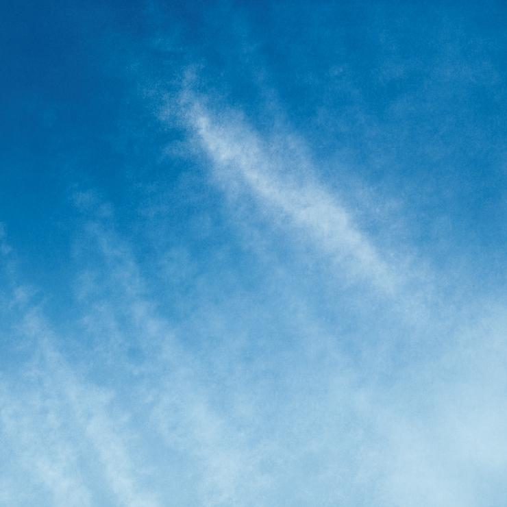 'LA의 충만(LA Exuberance)' 연작 (2016), 타치타 딘. 15 hand-drawn 3-colour blend lithographs. Each 75,9 x 75,9cm Tacita Dean; Courtesy of the Artist; Frith Street Gallery London and Marian Goodman Gallery, New York/ Paris. Published by Gemini G.E.L., Los Angeles