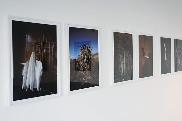 벽에 걸린 정성태 작가의 작품들.