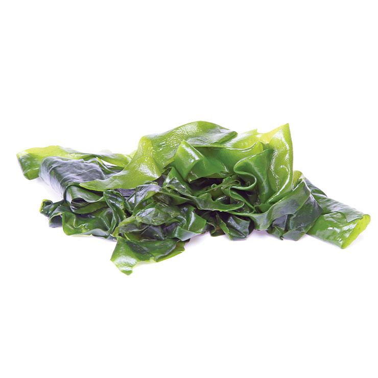 미역▶점액 물질인 알산과 라미니 성분이 체내 중금속을 배출하고 콜레스테롤 흡수율을 낮춰준다.