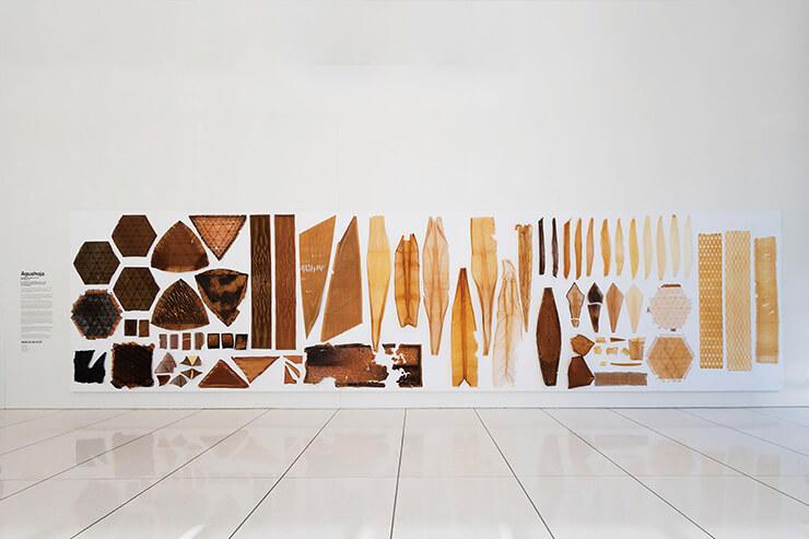 '이구아호아 1(2018)' 프로젝트를 위해 제작된 부품들. 주재료인 셀룰로오스와 키토산, 펙틴의 농도에 따라 다양한 색과 경도, 투명도를 띠고 있다.