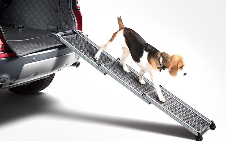 반려동물을 위한 자동차 회사들의 배려와 아이디어가 늘어나고 있다.