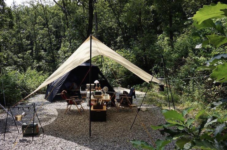 더숲 캠핑장