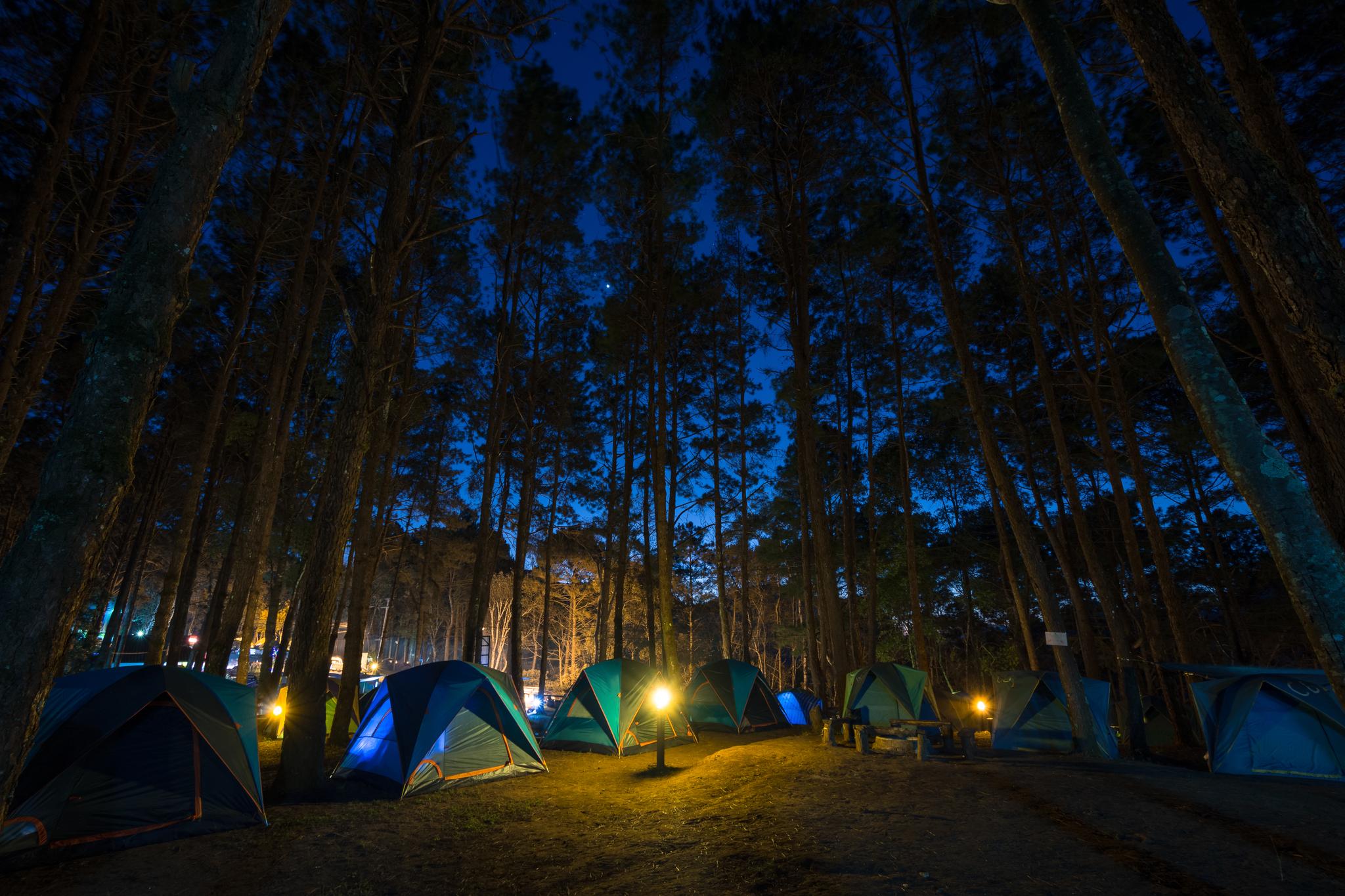 텐트부터 글램핑까지 캠핑족을 위한 경치 좋은 캠핑장을 추천한다.