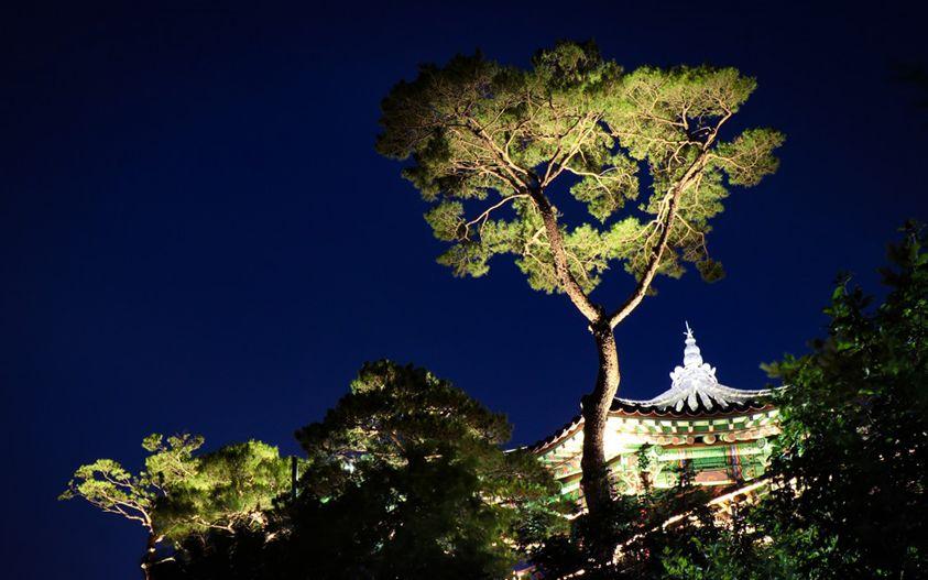 서울을 벗어날 수 없는 당신을 위해 준비했어요. 환환 보름달에 소원을 빌어보자고요. 기분 전환에 탁월한 서울 야경 명소.