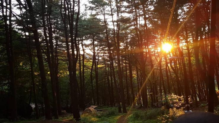 축령산 자연휴양림