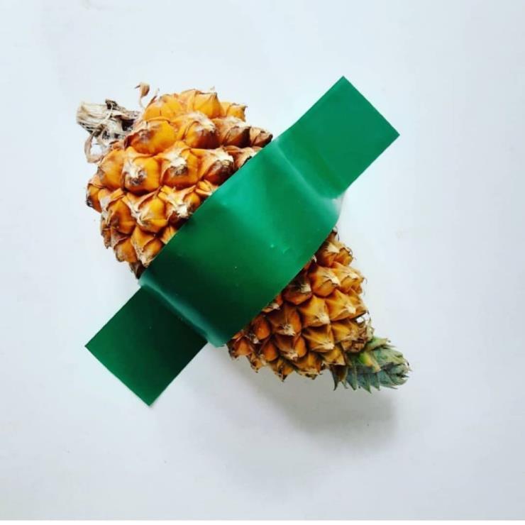 파인애플 외에도 고추, 호박, 사과, 오이 등 온갖 과일과 채소가 패러디로 등장! @maldito_alho_de_minas_gerais