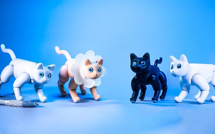 털이 빠지지 않는 로봇 고양이 '머스캣'을 소개한다.