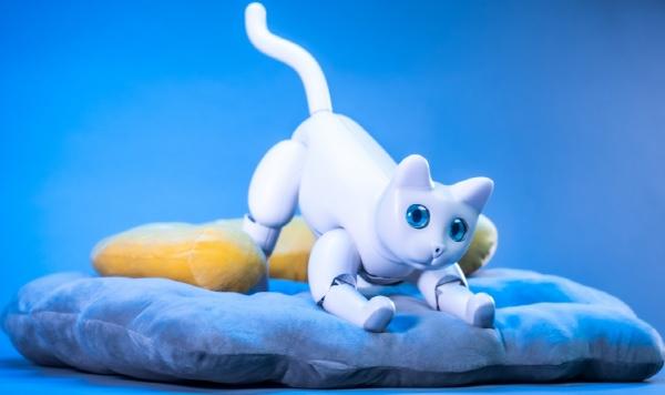 로봇 고양이 '마스캣'