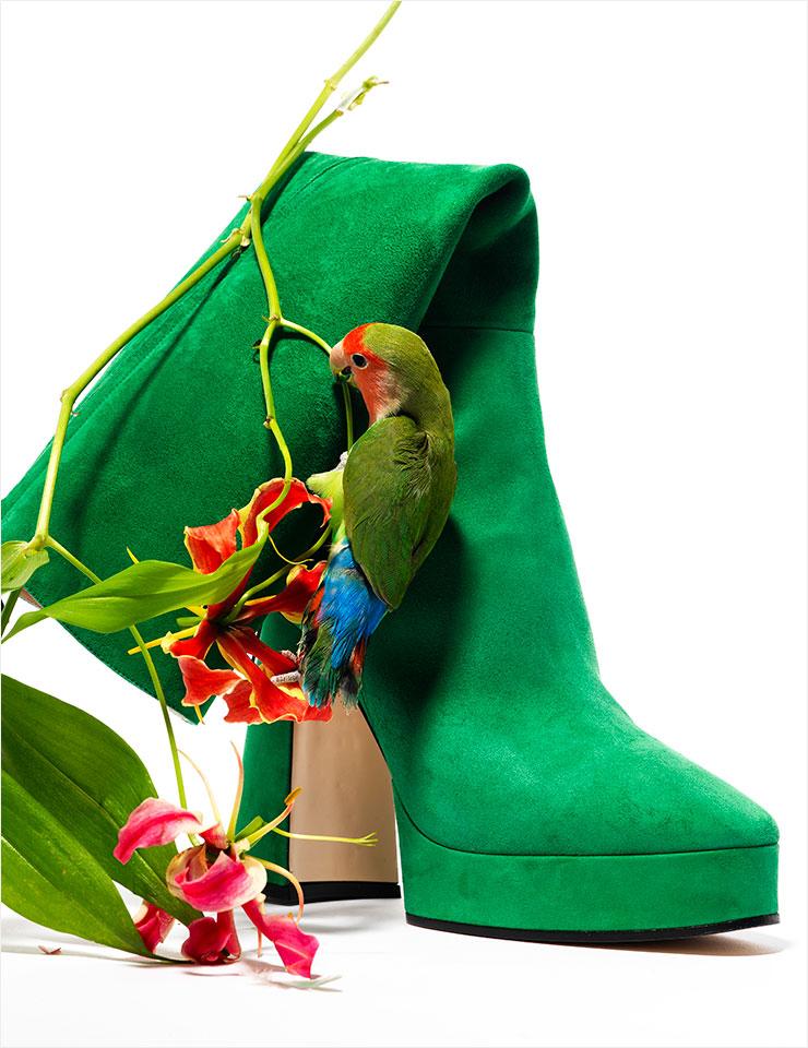 선명한 그린 컬러의 스웨이드 롱부츠는 2백30만원, Gucci.