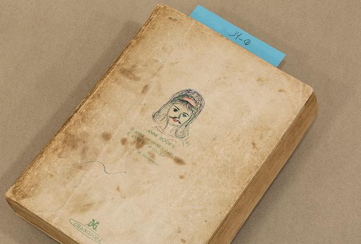〈앤 - 빨간머리 앤, 앤의 청춘〉 1964