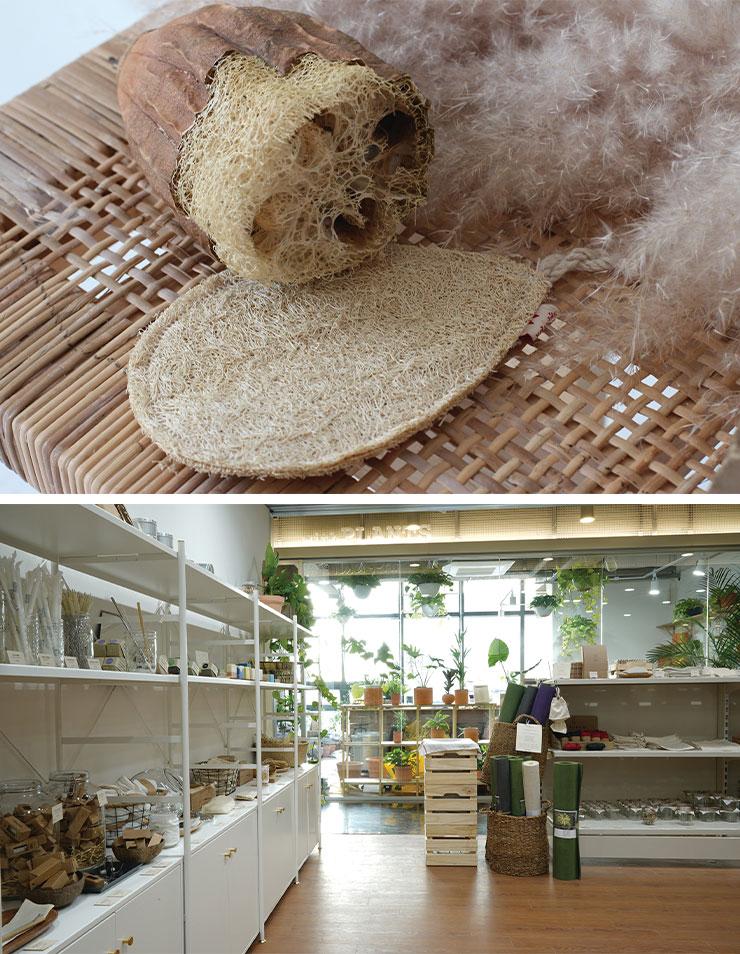 다양한 에코프렌들리 제품과 식물이 어우러진 더 피커 매장 전경.
