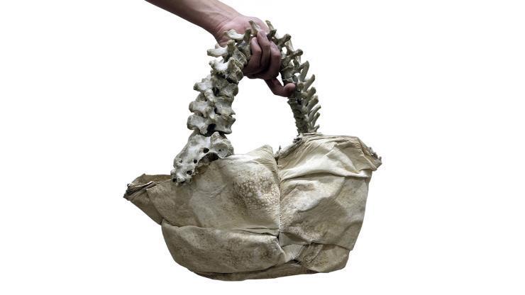arnold putra, human spine bag