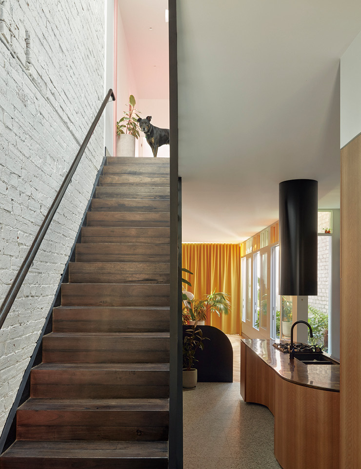 반려견 올리가 2층에서 계단 아래를 내려다보고 있다. 갸름한 형태의 거실 끝에 있는 겨자색 커튼과 노란색의 스테인드글라스 덕분에 햇살이 밝게 내리쬐는 느낌이 든다.