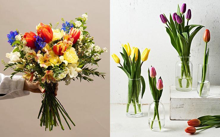 '코로나 블루' 극복템! 봄꽃을 정기적으로 배달해드립니다.