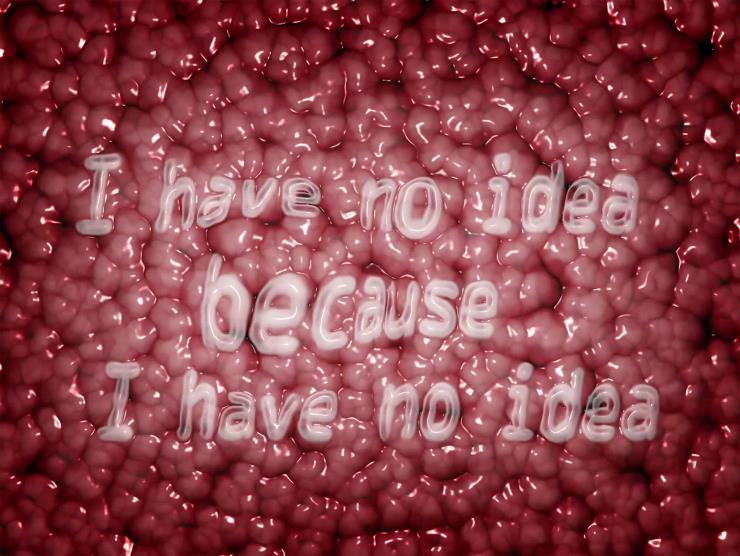 인세인 박, I have no idea, because I have no idea(나는 아무 생각이 없다, 왜냐하면 아무 생각이 없기 때문이다), 2020, 싱글 채널 비디오, 사운드, 25초 ⓒInsane Park and Arario Gallery
