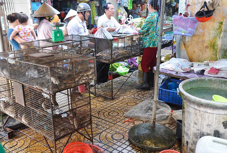 """크리스천 왈저가 말한다. '야생동물을 상업적으로 매매하는 것은 새로운 바이러스가 만들어지기에 아주 좋은 환경이다."""" ©WCS(MARKET)"""