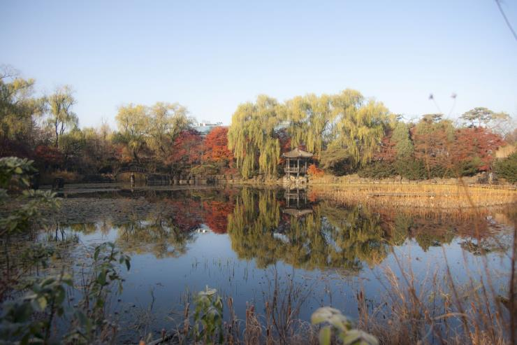 벽초지수목원 공식 웹사이트