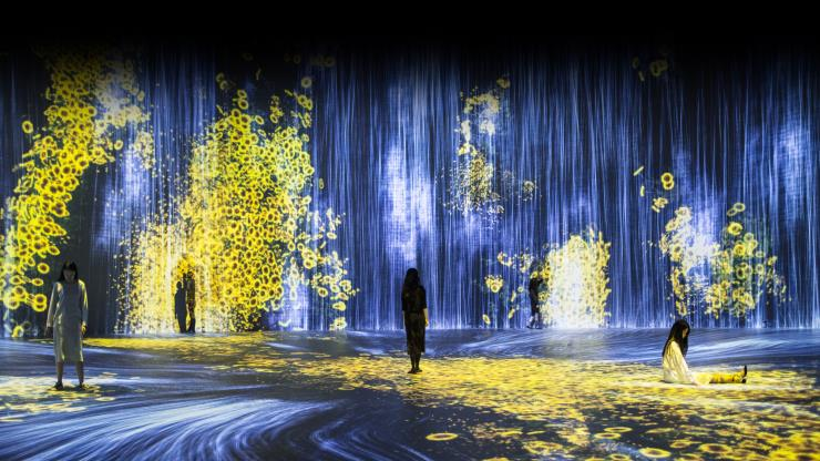 teamLab, <꽃과 사람, 제어할 수 없지만 함께 살다 - Transcending Boundaries, A Whole Year per Hour> © teamLab