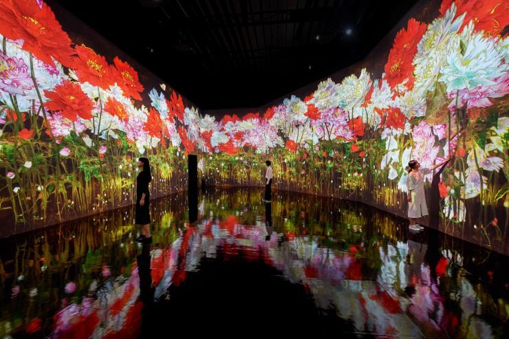 teamLab, <증식하는 무수한 생명>, 2020, Interactive Digital Installation, Sound: Hideaki Takahashi © teamLab, courtesy Pace Gallery