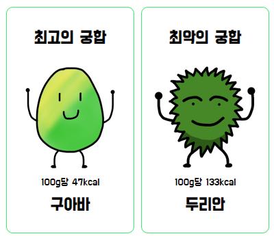 〈열대과일 MBTI 테스트〉 캡처